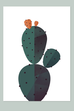 Maya Stepien | Geometry and Biology: Cactus